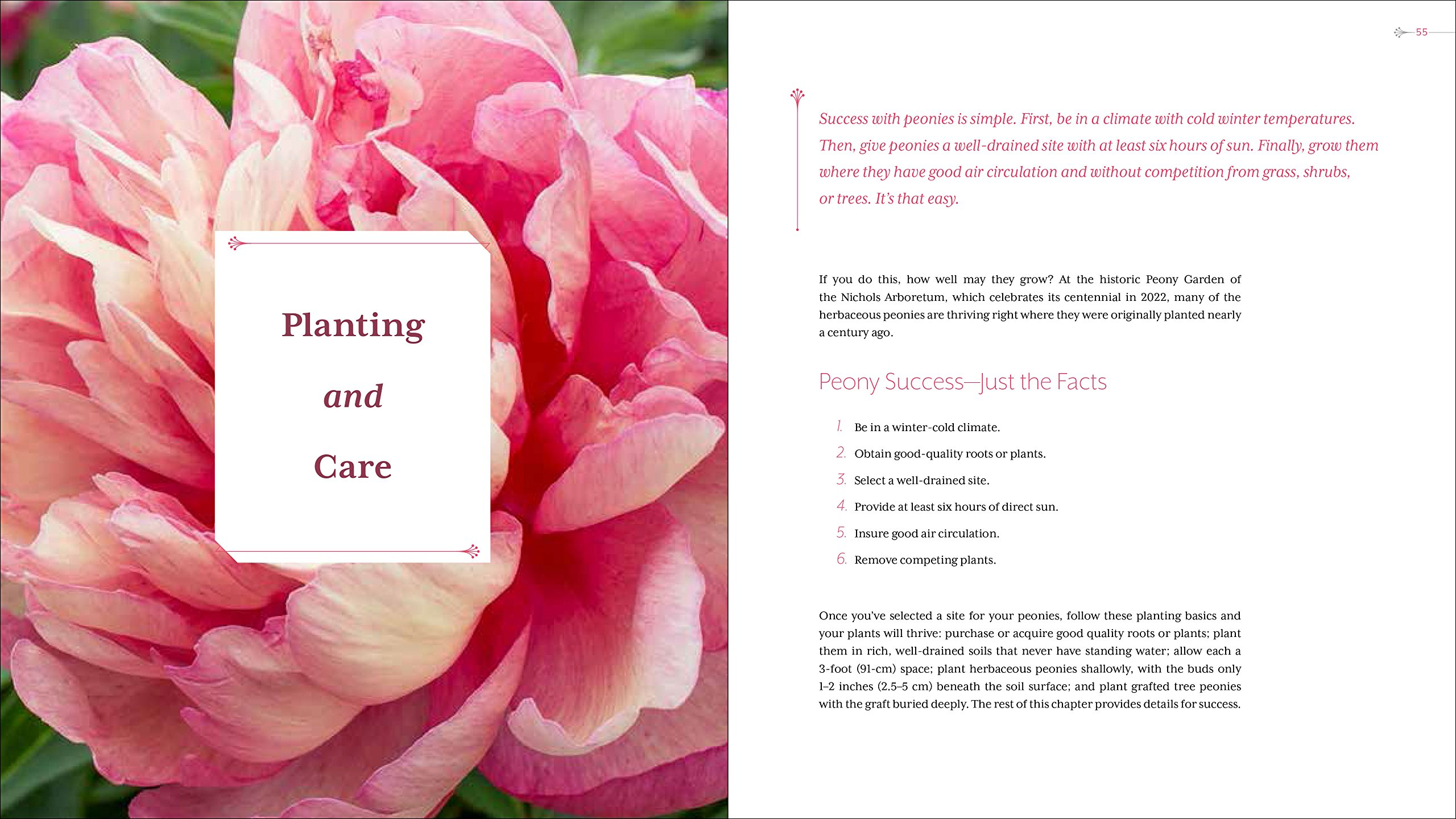 peony the best varieties for your garden david c michener