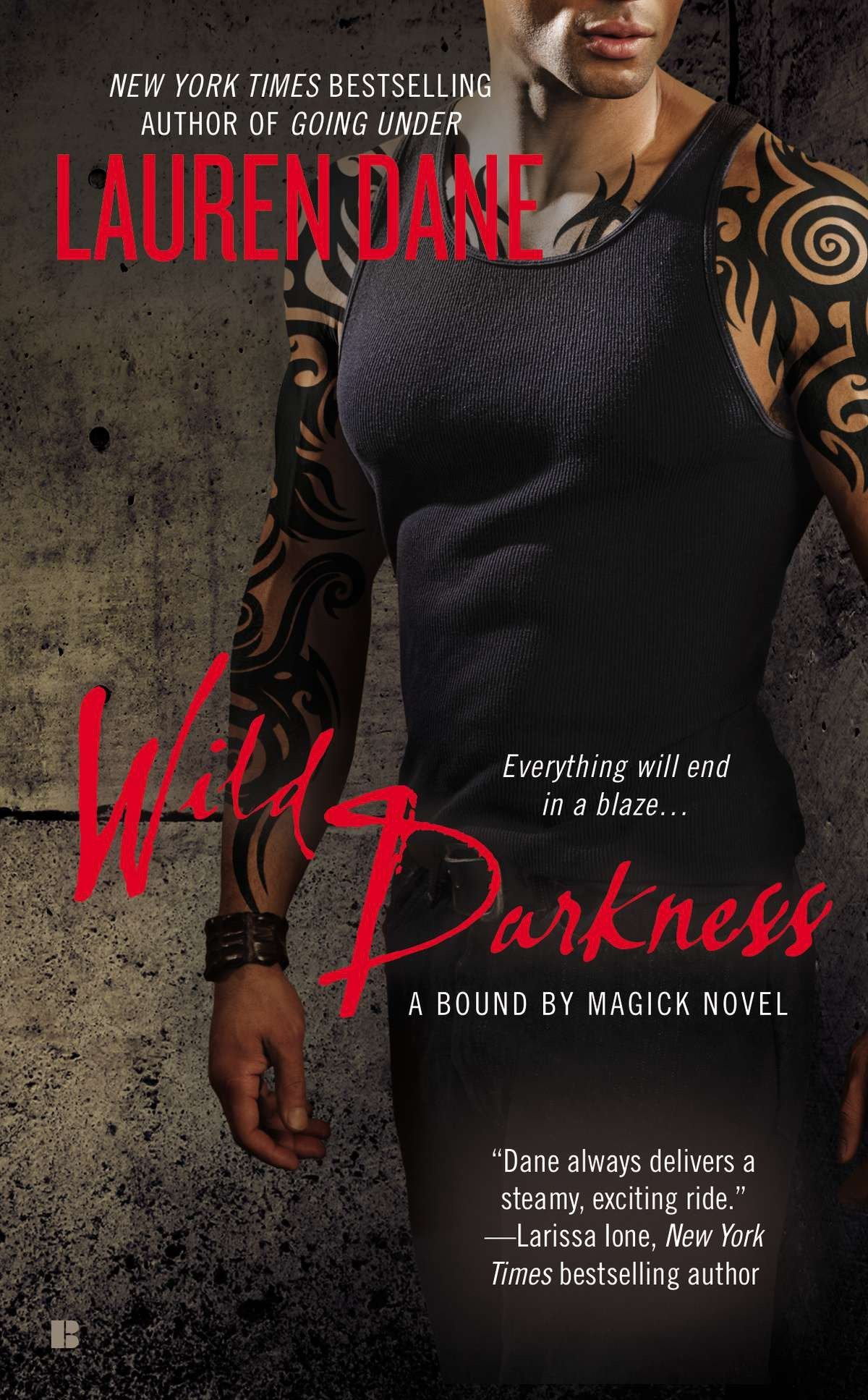 Wild Darkness (A Bound By Magick Novel)
