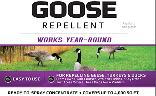 natural canada goose repellent