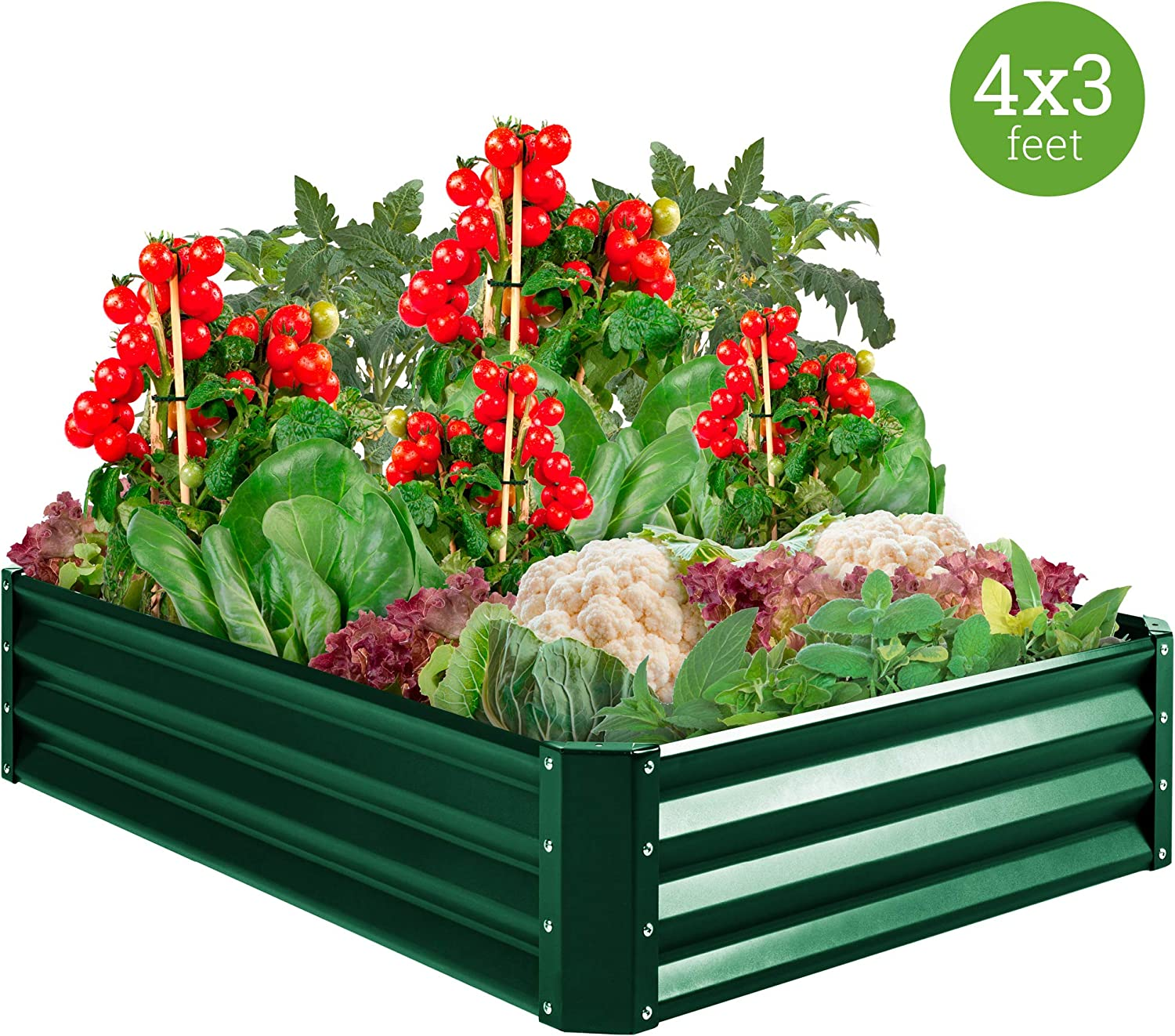Amazon Com Best Choice Products 4x3x1ft Outdoor Metal Raised