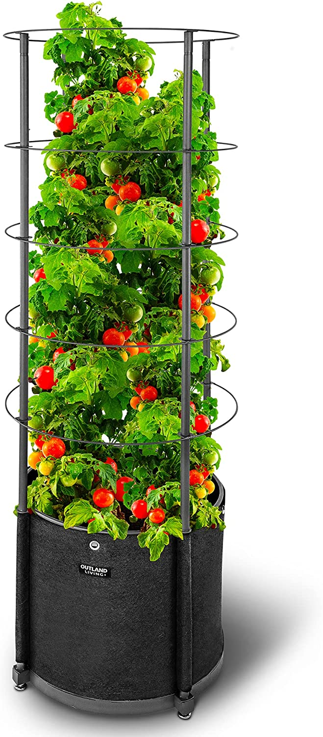 Outland Living Tomato Cage Garden Trellis - 68 Inches 20 Gallons Tomato Planter Perfect to Grow Your Climbing Plants Such as Tomatoes, Peas, Beans, Cucumber, Squash (Pack of 1)