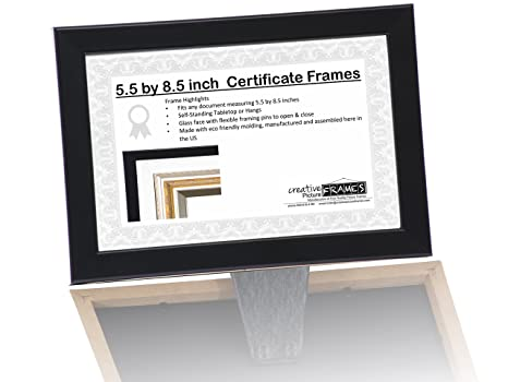 Amazon.com : Professional Beautician License Frame - 5.5 by 8.5 inch ...