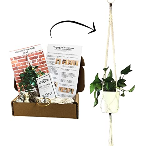 Plant Hanger Natural Create Your Own Make Your Own Hanger DIY MACRAME Plant Hanger Kit