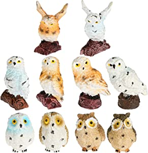 Jetec 10 Pieces Resin Mini Owls Fairy Garden Miniature Owls Ornaments Mini Animals Resin Figurines for Moss Landscape Bonsai Crafts Home Decoration