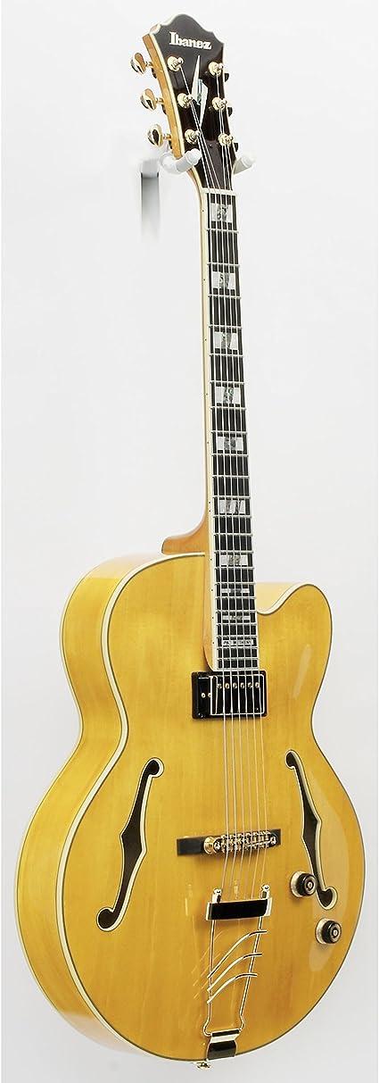 Ibanez - Pm2 aa guitarra eléctrica semicaja: Amazon.es ...