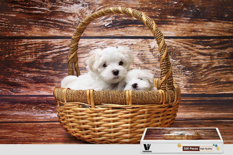 【中古】 pigbangbang、20.6 – X 15.1インチ、木製Largeサイズ – Maltese Maltese Puppies X – 500ピースジグソーパズル B07CV8F4X2, お供え供養品の『祈心伝心』:4a319e55 --- fenixevent.ee