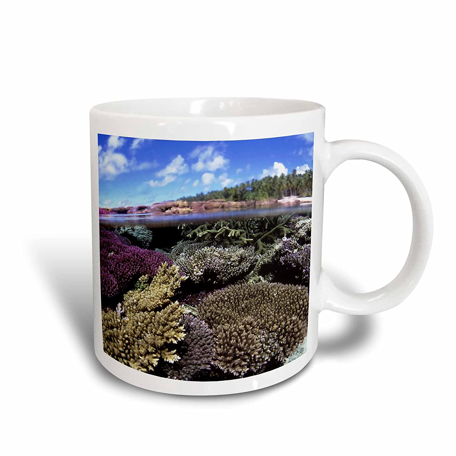 3dRose mug_46220_1'Split shot of corals and sky. Majuro Atoll, Marshall Islands' Ceramic Mug, 11 oz, Multicolor