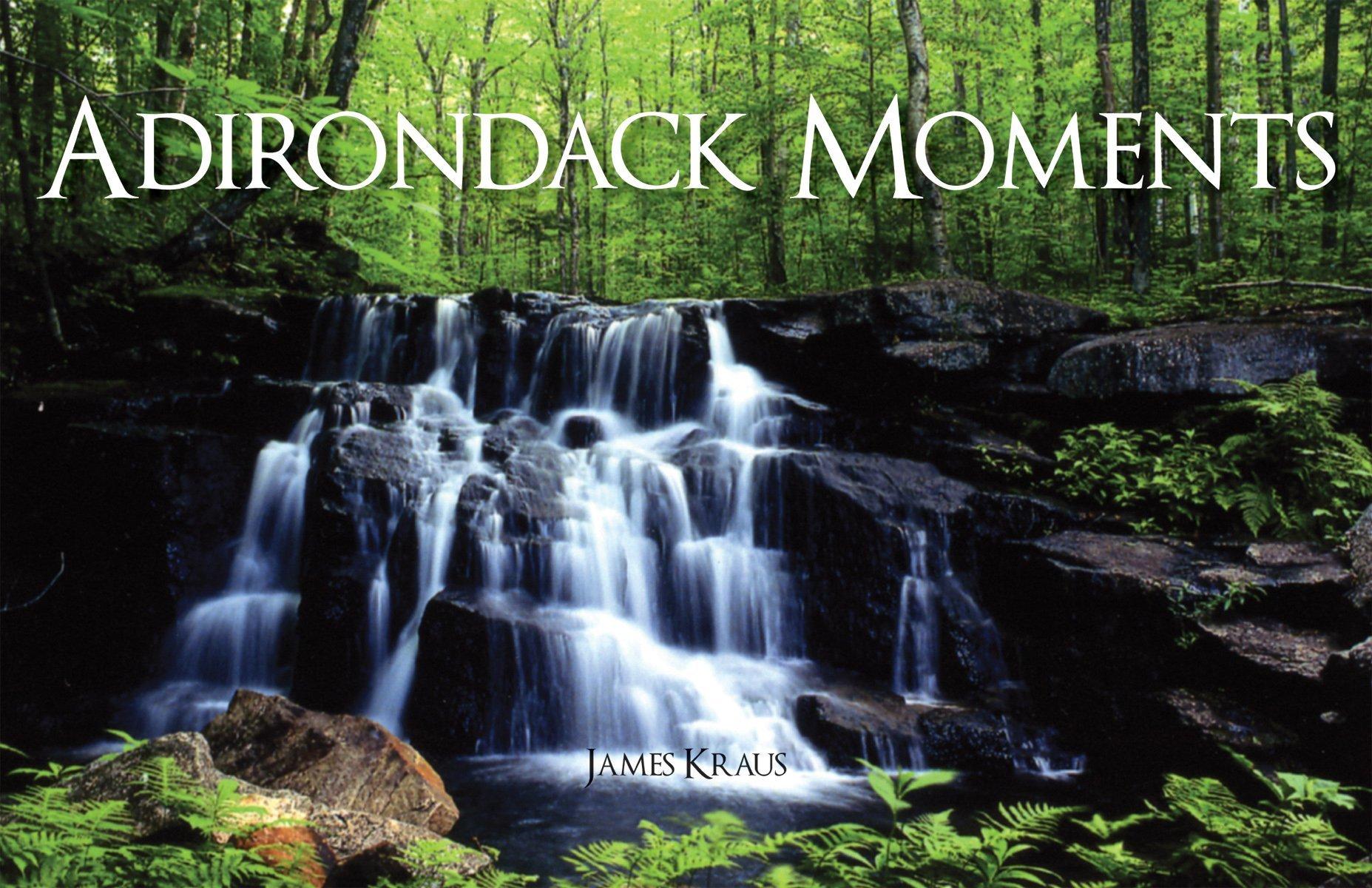 Download Adirondack Moments pdf epub