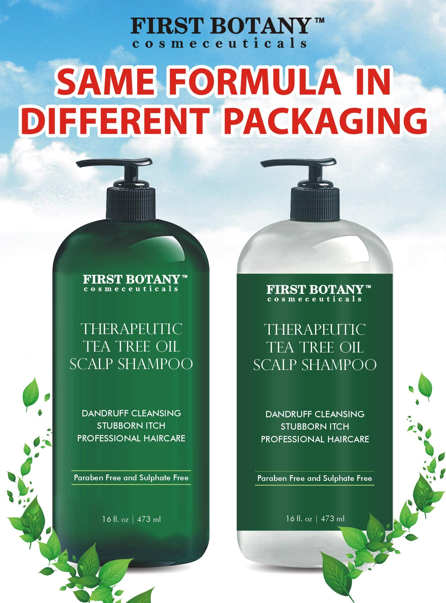 Tea Tree Oil Shampoo 16 fl oz - Anti Dandruff Shampoo Natural Essential Oil For Dry Itchy & Flaky Scalp - Sulfate Free, Anti-fungal, Anti-Bacterial Cleanser - Prevents Head Lice & Thinning by First Botany Cosmeceuticals