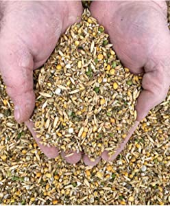 New Country Organics Soy-Free, Corn-Free Layer Feed, 50 lbs