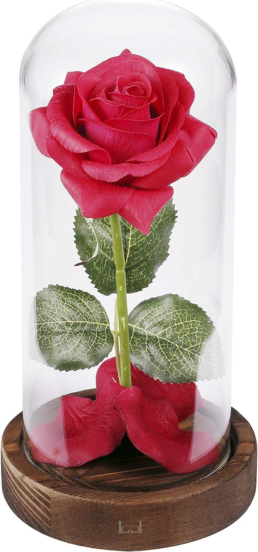 Kit de rosas