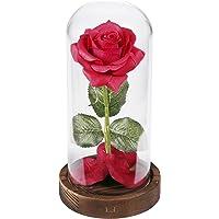 """Kit de rosas """"La Bella y la Bestia"""""""