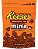 REESE'S Chocolate Peanut Butter Candy, Minis, 8 ounce