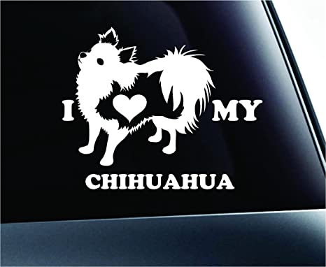 Chihuahua ST#6 Decal Show your Breed Chihuahua Pet Window Sticker