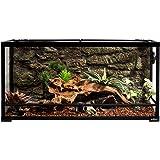 """REPTI ZOO Reptile Glass Terrarium,Double Hinge Door with Screen Ventilation Reptile Terrarium 36"""" x 18"""" x 18"""" or 36"""" x…"""
