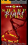 Sharp Right Turn (Sharp Turn Saga Book 2)