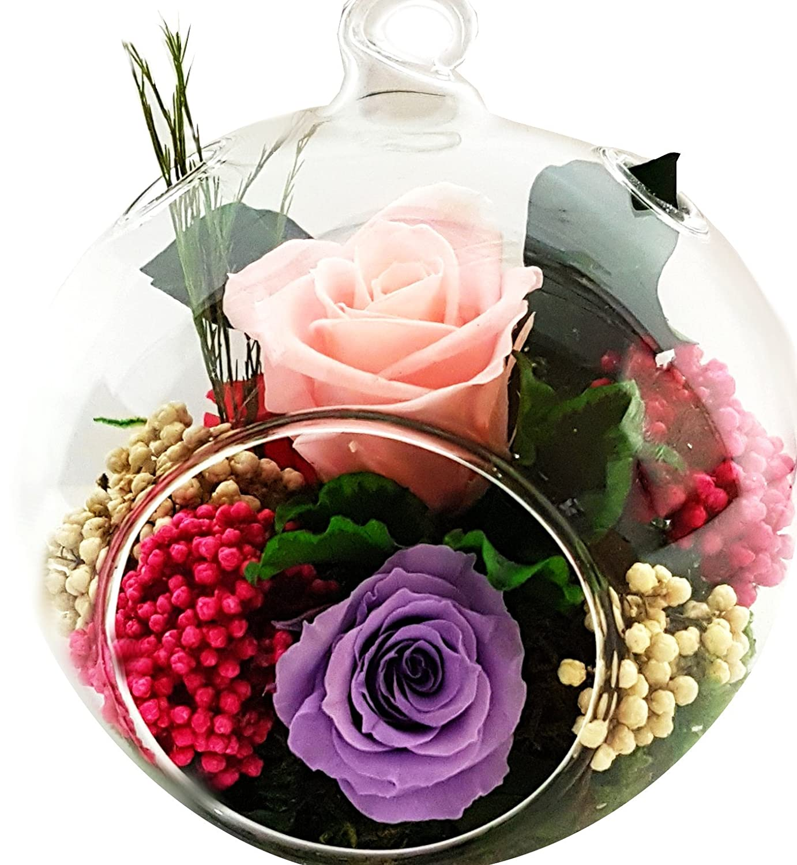 Rosen-te-amo Konservierte-Rosen– Blumen-Gesteck aus ECHTE Blumen in der Vase, 2 PREMIUM haltbare-Rosen – unser EXKLUSIVES Blumen-Arrangement sind lange haltbar, handgemacht und mit Liebe gefertigt (Kugel-Vase) (1, Rosa) (1, Pink) (1, Lilac)