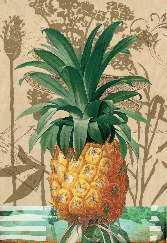 "Pineapple Fruit Decorative Garden Flag 12.5/"" x 18/"" Briarwood Lane"