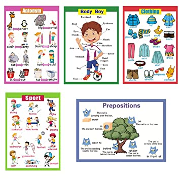 5 Pieces Laminated Educational Preschool Posters For Toddlers