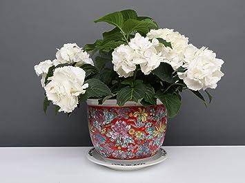 Porzellan Blumentopf Blumenübertopf Pflanztopf Rot Ø 40 cm P0064-6