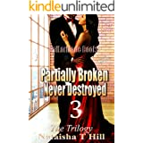 Partially Broken Never Destroyed III