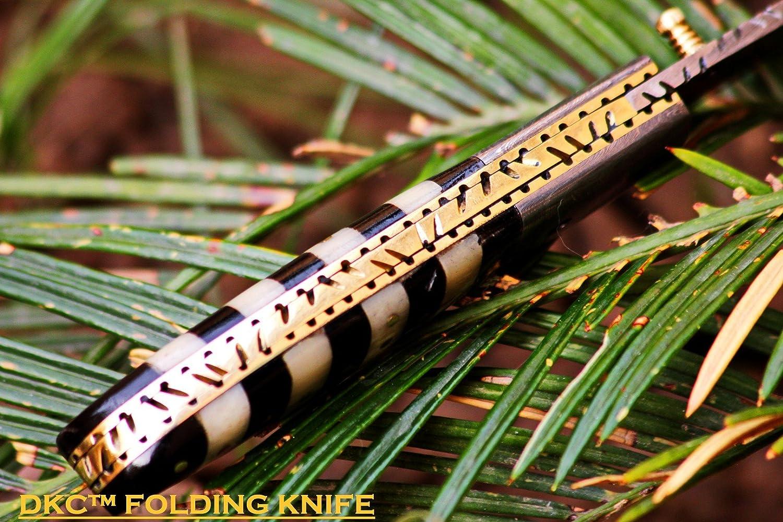 Knife Bumblebee: description, characteristics 51