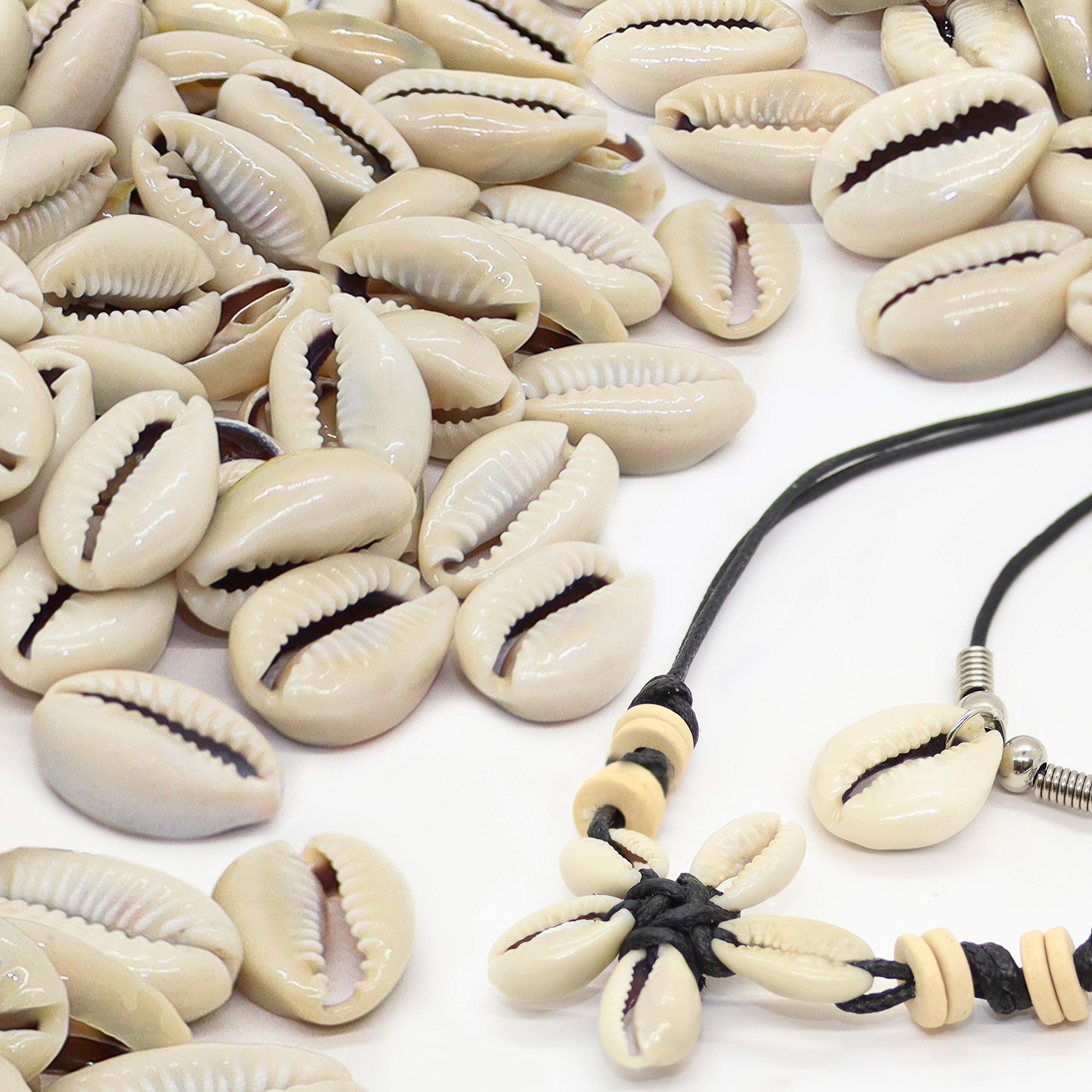 150 Genuine Cowrie Shells for Jewelry Making Adults, Natural Smooth Cut Cowrie Shell Beads, Medium Puka Shells Bulk for Necklaces, Ocean Beach Seashells for Bracelets, Includes 2 Free Necklaces by Fun-Weevz