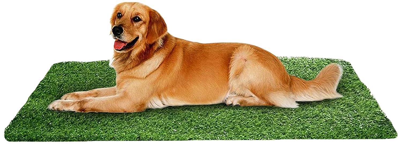 ホームCal Artificial Grass Rugシリーズ風景装飾人工芝アウトドアペット犬領域with Neatエッジ2 cm 3 ' x4 ' Spring Grass B071KT9X5J