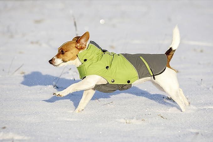 Abrigo de exterior para perros Vancouver, verde/gris, 45 cm: Amazon.es: Productos para mascotas