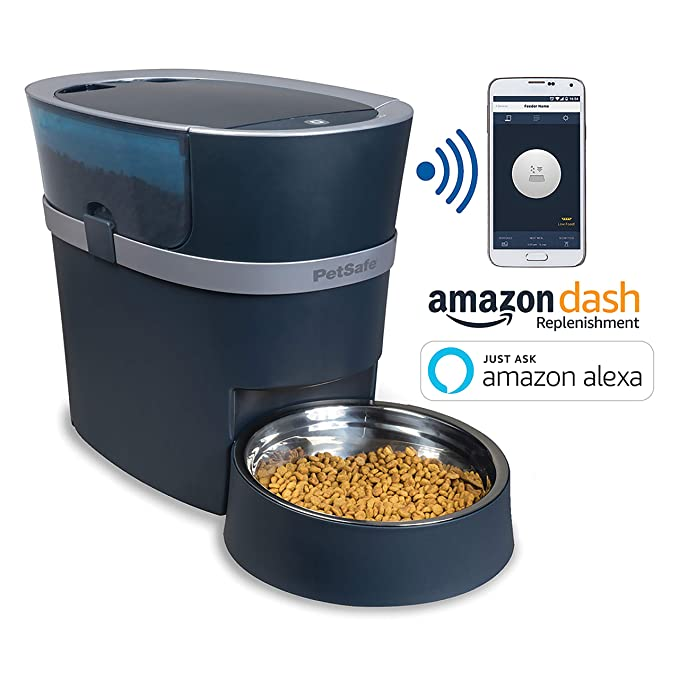 best automatic cat food dispenser