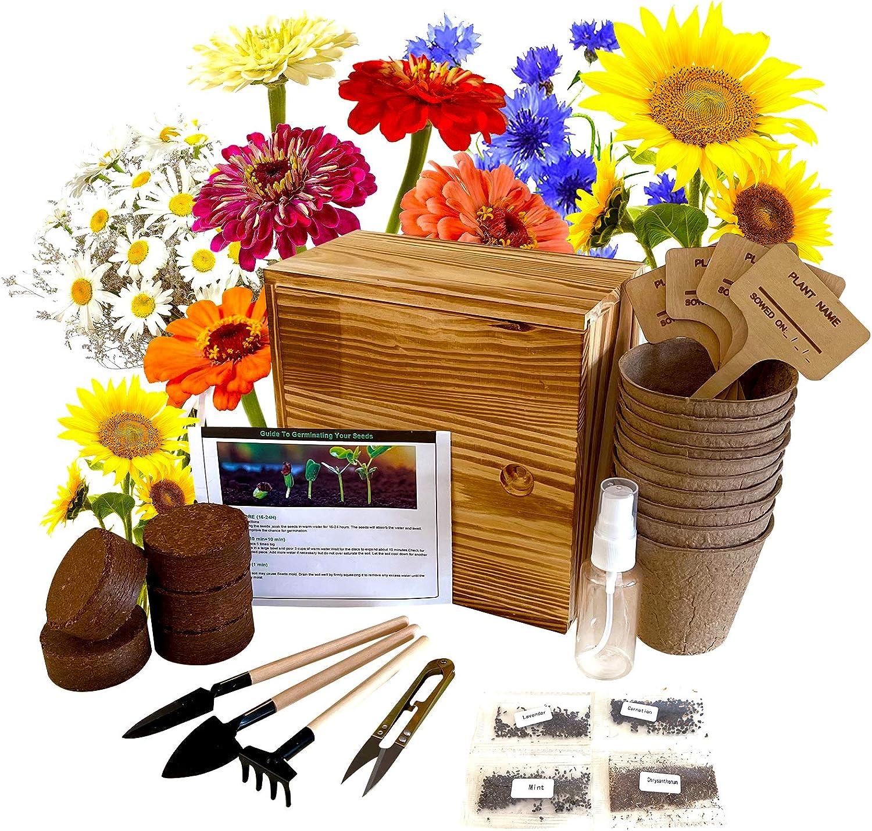 Hand-Mart Flower Daisy Starter Kit Indoors with 4 Seeds, Daisy Cornflower Sunflower Zinnia, Including Soil, Pots, 3 Garden-Tool, Pruner, Sprayer, Plant Labels, Wood Box, DIY Craft for Kids Adults