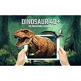 Octagon Studio Dinosaur 4 D+ Flashcards