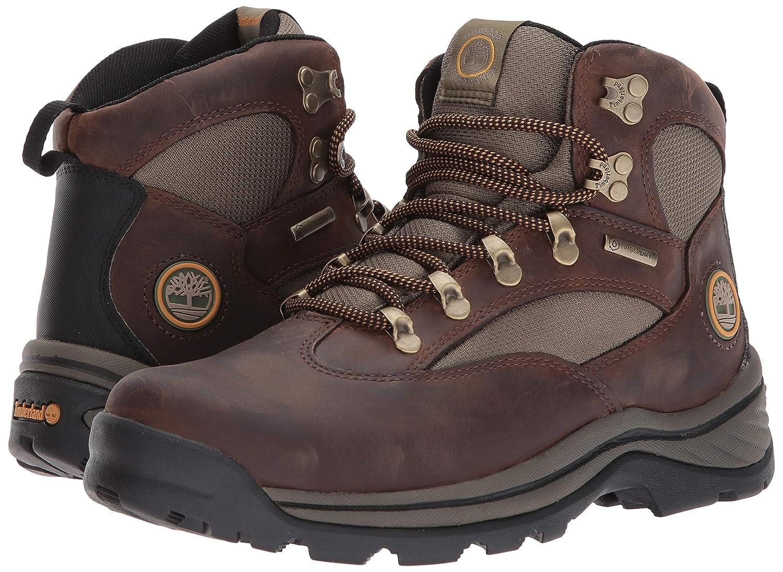 Timberland Chocorua Trail Gtx 1 - Botas de senderismo para hombre, Marrón, 9.5: Amazon.es: Zapatos y complementos