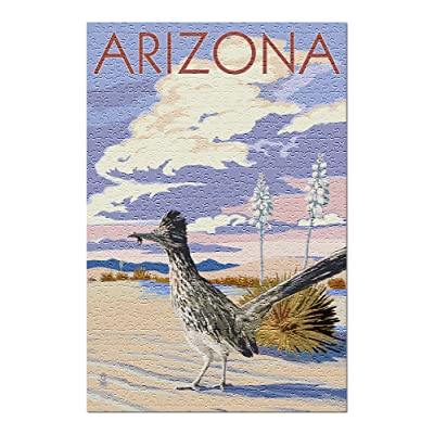 Arizona - Roadrunner Scene (Premium 500 Piece Jigsaw Puzzle for Adults, 13x19, Made in USA!): Toys & Games