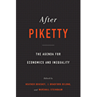 After Piketty: The Agenda for Economics and Inequality (English Edition)