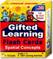TestingMom.com Gifted Learning Flash Cards – Visual Spatial Concepts for 1st - 2nd Grade – Non-Verbal Puzzles for NNAT Test, NNAT2, NNAT3, CogAT Test, Iowa Test, NYC Gifted and Talented, and More!