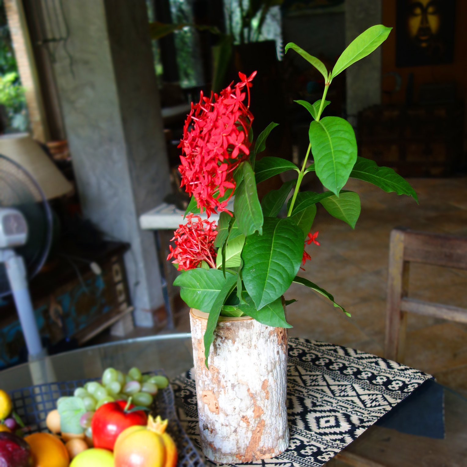 roro 9 Inch Natural Wood Branch Vase with Bark by roro (Image #2)