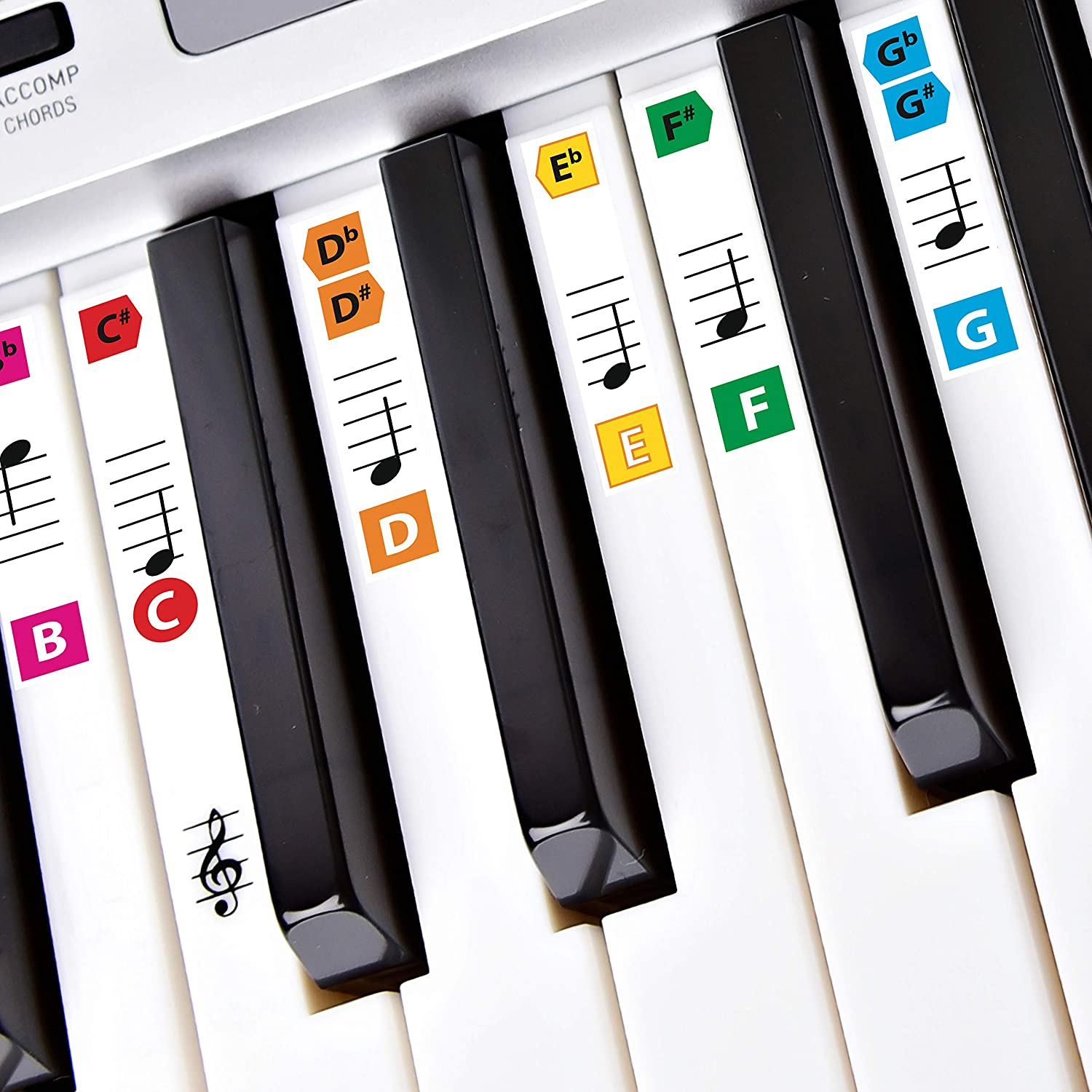 2a06793716f Best Adhesive Color Piano Key Note Keyboard Stickers for Adults   Children s  Lessons