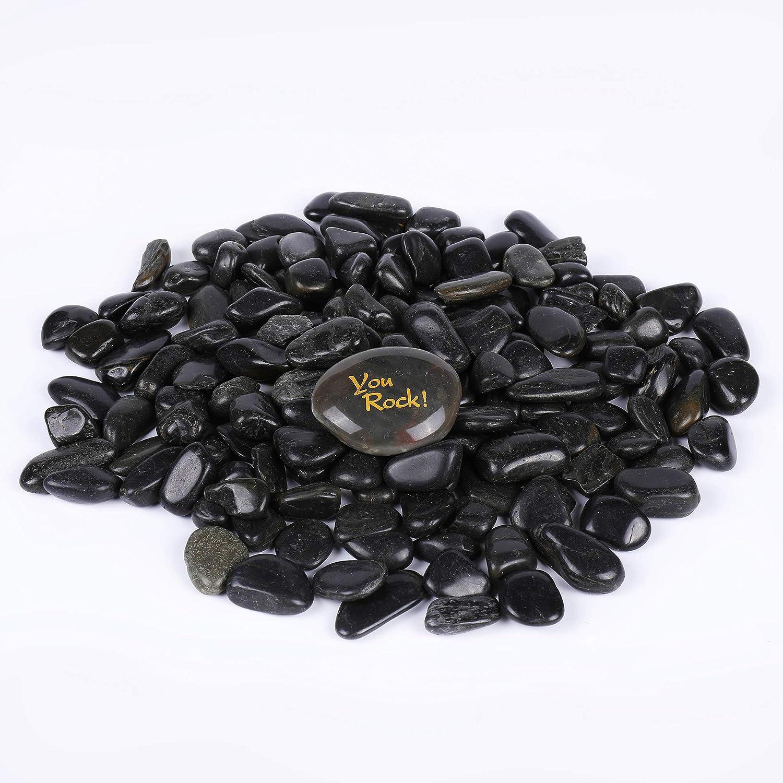 ROCKIMPACT 5.5 lbs. Landscaping Rocks, Highly Polished Garden Decorative Stones, Succulent Rocks, Pebbles for Bonsai Plant Pot, Lucky Bamboo, Kids Crafts, Aquarium, Terrarium Rocks (Jet Black, 3/4