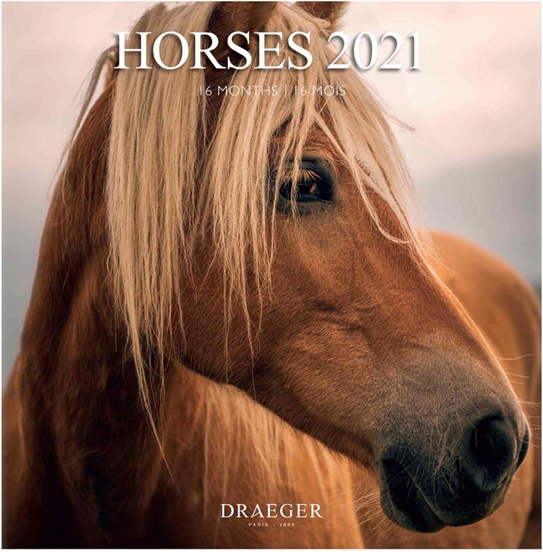 Draeger – Calendario de pared grande 2021 – Calendario de caballos – Rejilla mensual – 7 idiomas – Certificado FSC Mixto – Tinta vegetal – Calendario 2021 de pared – Gran formato 29 x 29 cm
