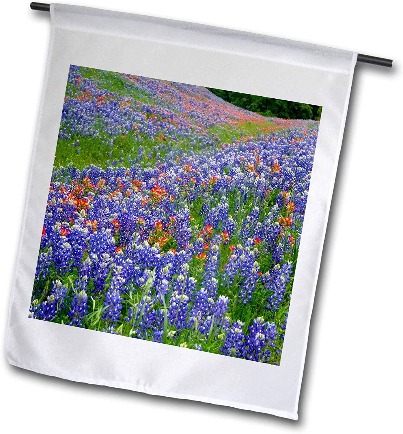 3dRose Texas Hill Country Wildflowers. Bluebonnets and Indian Paintbrush. - Flags (fl_332111_1)