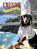 Crusoe the Celebrity Dachshund 2018 Engagement Calendar