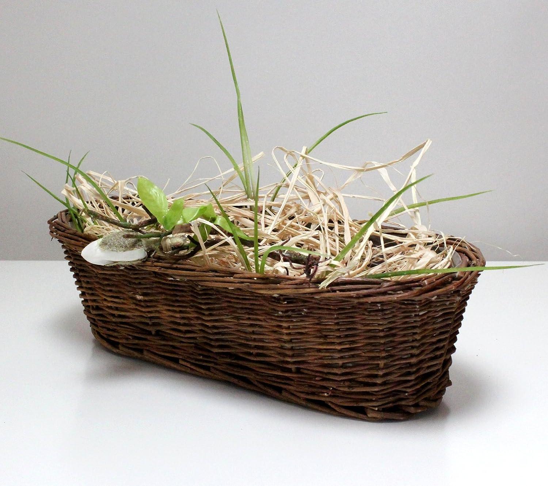 Cesto di vimini cestino di vimini cestino Pasquale PASQUA–Vaso Fioriera cesto per piante in vaso ovale marrone piccolo 35cm Lucht