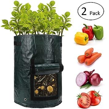 Amazon.com: ANPHSIN10 Bolsas de patata para jardín con ...