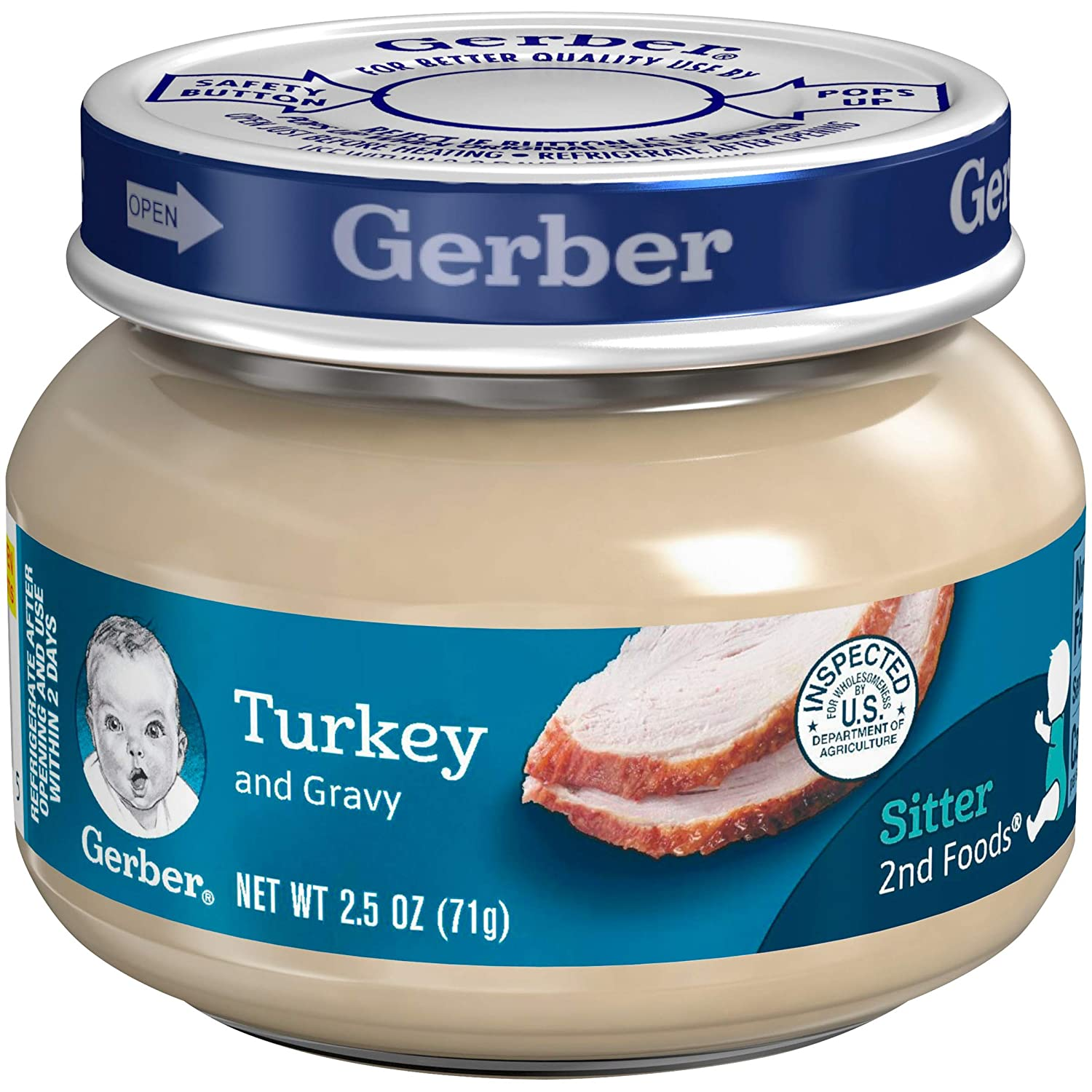 Gerber Purees 2nd Foods Turkey & Gravy, 2.5 Ounce Jars (Pack of 20)