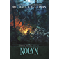 Nolyn (The Rise and Fall Book 1) (English Edition)