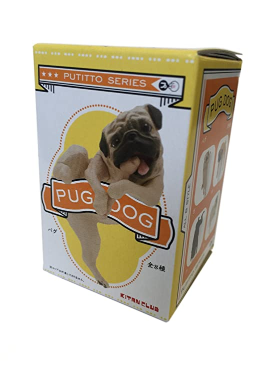 Amazon.com: Kitan Club Putitto - Taza para perro, incluye 1 ...