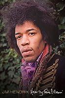 Jimi Hendrix - Hear My Train a Comin'