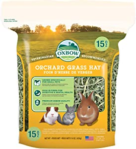 Oxbow Animal Health Orchard Grass Hay - All Natural Grass Hay for Chinchillas, Rabbits, Guinea Pigs, Hamsters & Gerbils - 15 oz.