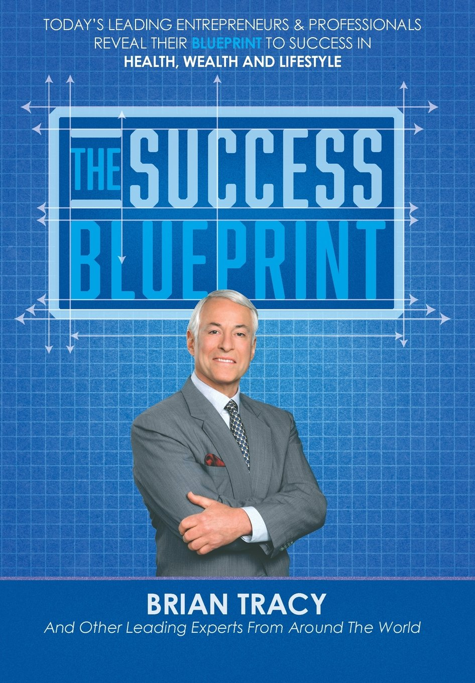 The success blueprint nick nanton jw dicks brian tracy malaika the success blueprint nick nanton jw dicks brian tracy malaika simmons bob roark louis stack 9780997536669 amazon books malvernweather Image collections